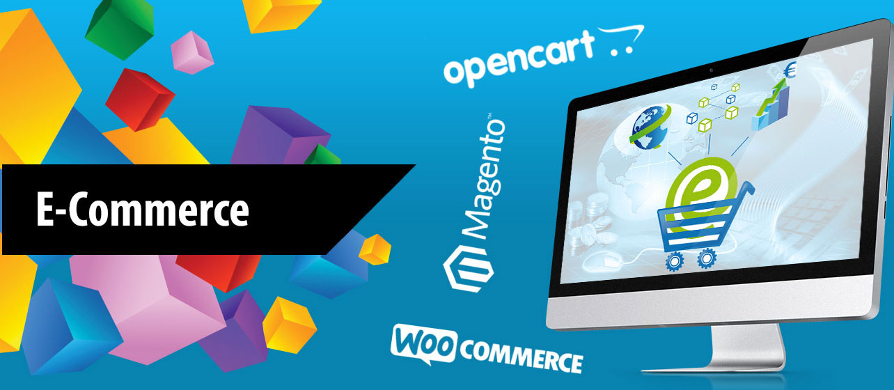 ecommerce website development company in Hisar (Haryana)